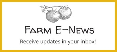 None Such Farm Newsletter