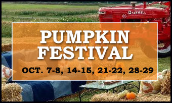 Pumpkin Festival - Buckingham Bucks County PA